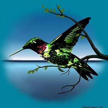 Hummingbird Heaven by EdmondHoggeJr