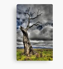 Alone again. Canvas Print