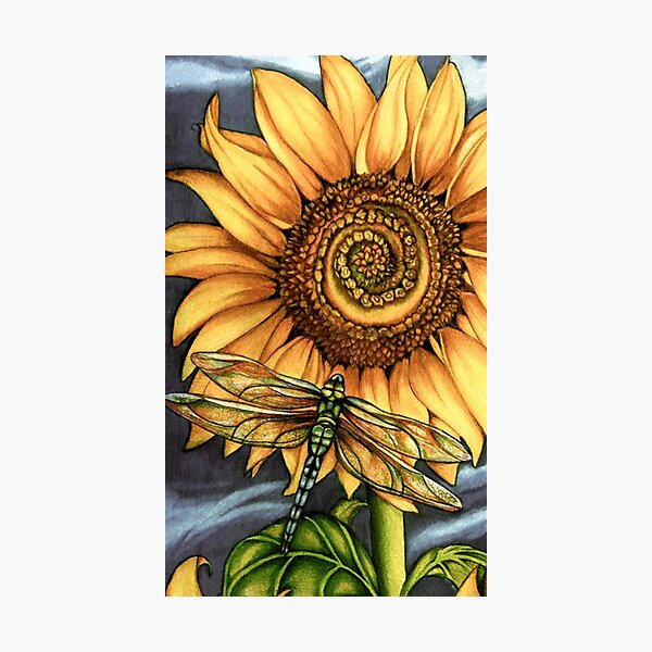 dragonfly Sunflower Photographic Print