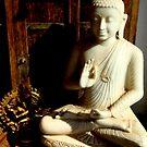 buddha at the door  by photoartindia