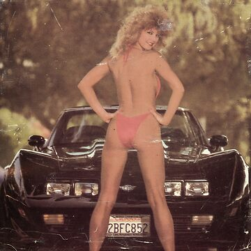 80's Pinup girl with Vette by Deadscan