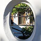 Through the Garden Window -  by Georgia Mizuleva
