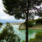 Water Reservoir by Ingrid Funk