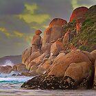 0265 Whisky Bay Rocks - Wilsons Prom by Hans Kawitzki