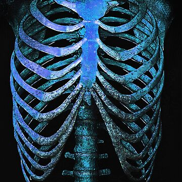 BLUE HUMAN RIBCAGE TEE BY MISKEL DESIGN CHRISTMAS 2018 GIFT by MUMtees