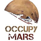 Occupy Mars Spacex Starman by Caitlin123123
