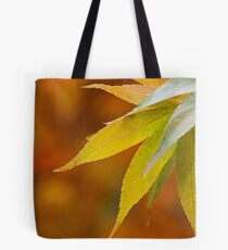 Colour Swatch Tote Bag