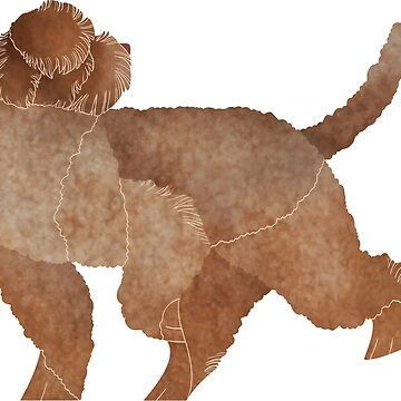 Year of the Dog - Lagotto Romagnolo by Kelgrid