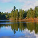 Spectacle Lake, Vancouver Island BC by AnnDixon