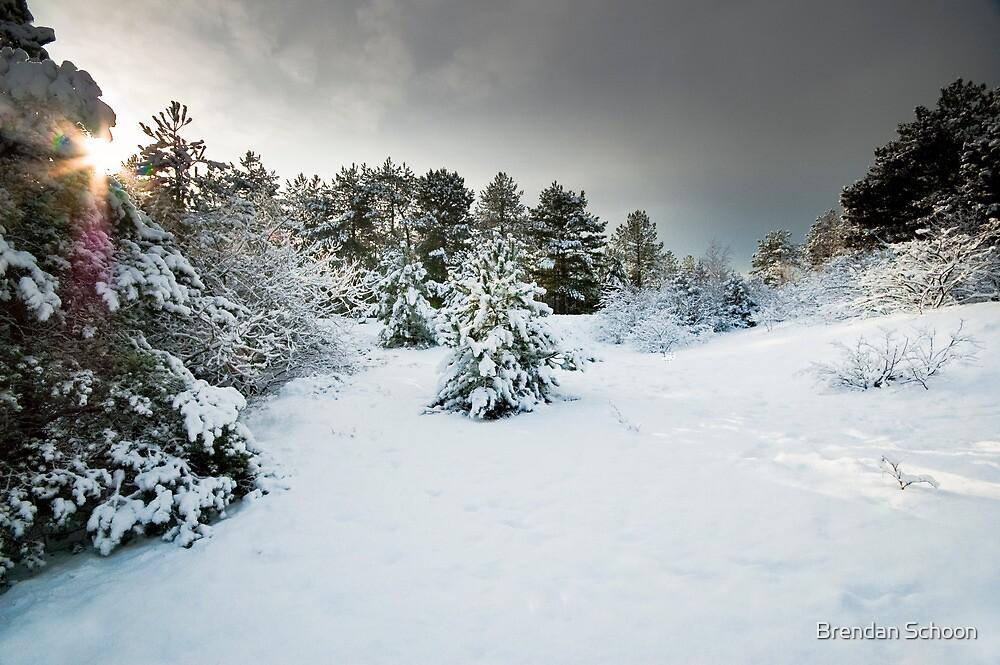 Lost On a Winter's Day by Brendan Schoon