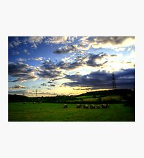 Brockadale Nature Reserve Photographic Print