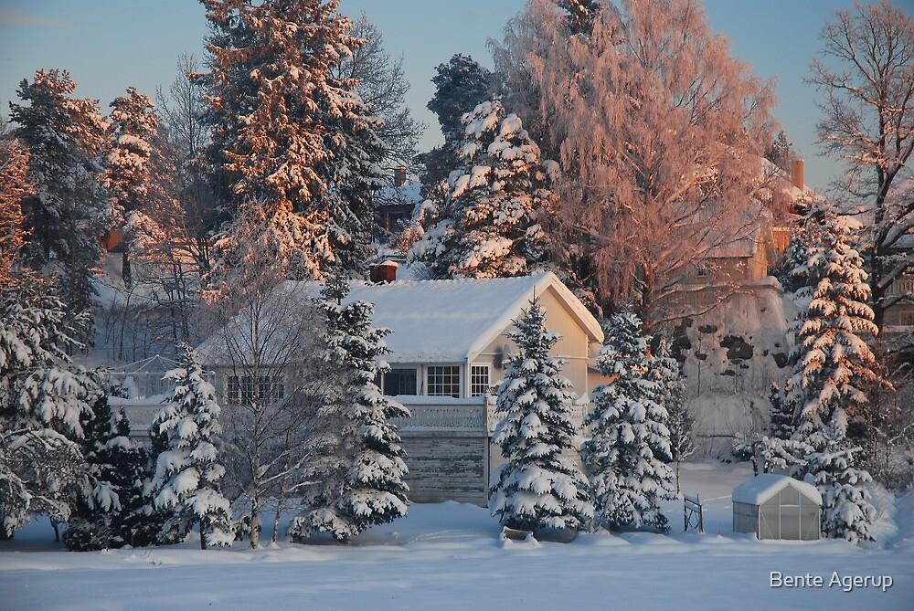 Winter wonderland by julie08