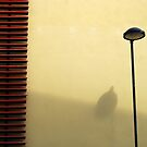 Lonely in the City by Andrea Kabai