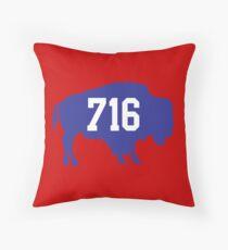 716 : Blue Throw Pillow