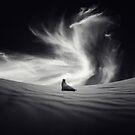 """sequía"" by Luis Beltrán"