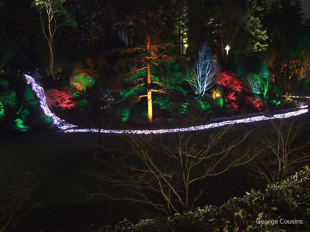 Night in the Sunken Garden (7) by George Cousins