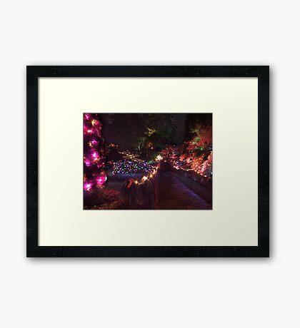Night in the Sunken Garden (8) Framed Print