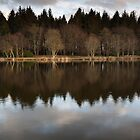 reflections, pitfour loch by codaimages
