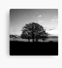 This time of the day Canvas Print