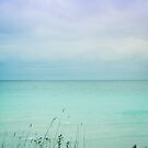 Secret Beach by OLIVIA JOY STCLAIRE