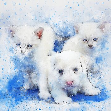dog cats pet art abstrat watercolor vintage animal colorful emotion by soufianeos