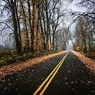 The End of Fall by Charles & Patricia   Harkins ~ Picture Oregon