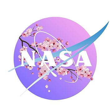 Nasa aesthetic pastel by itSof432