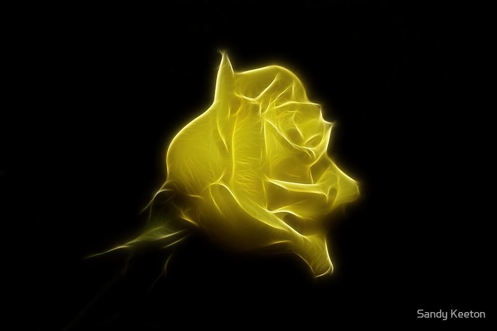 Yellow Rose by Sandy Keeton