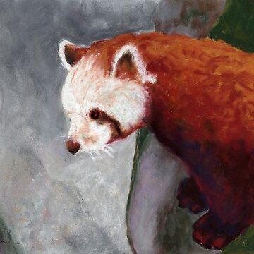 Red Panda by salamandaz
