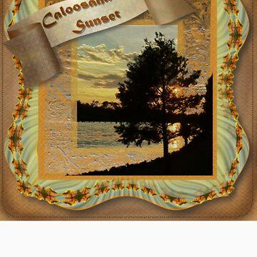 Caloosahachie Sunset by TravlynWomyn