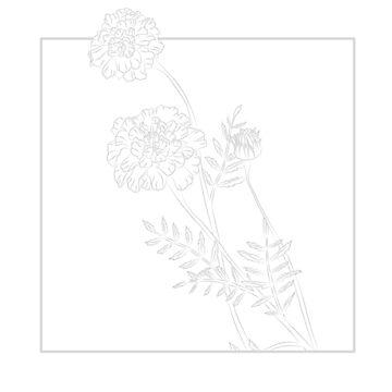 October - Marigold by maryhorohoe
