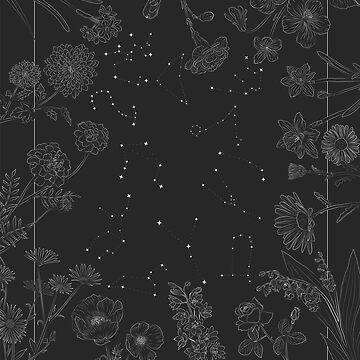 Zodiac Constellations and Flowers by maryhorohoe
