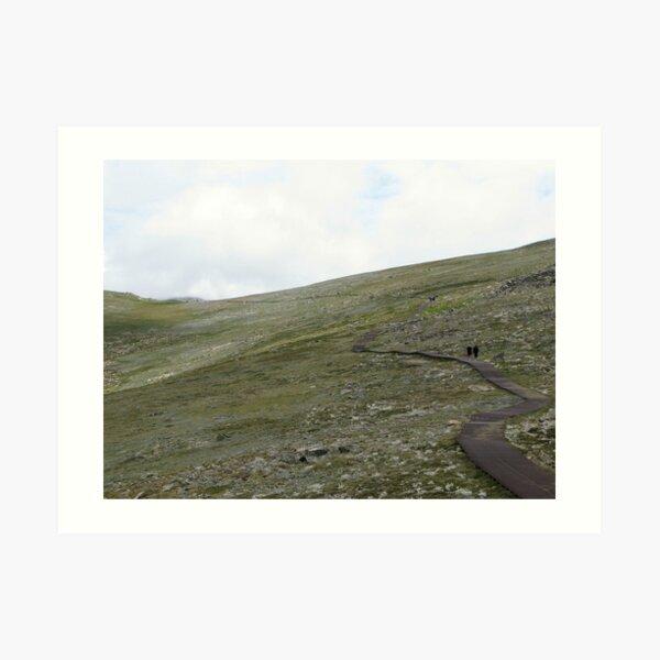 Walkway to Mount Kosciuszko Art Print