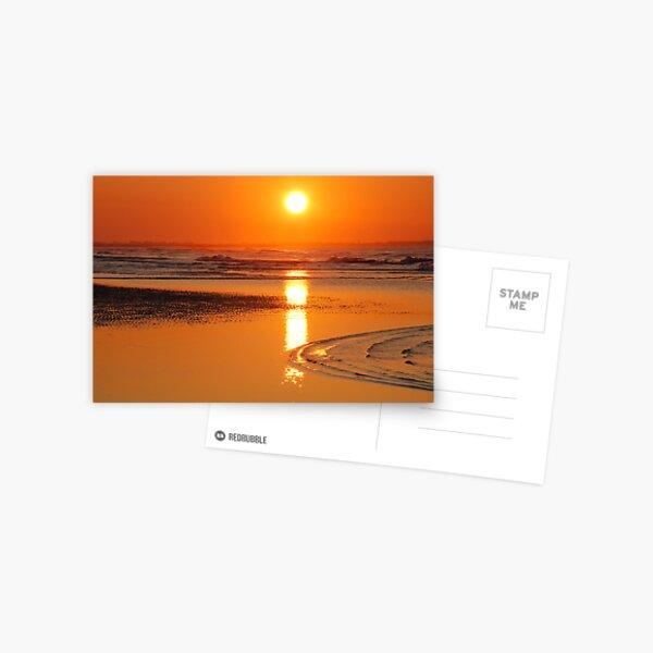 Sunset in Zeeland Postcard