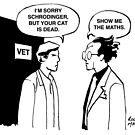 Schrodinger goes to the vet by Roger Mason