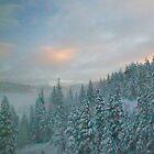 Winter Magic by Barbara  Brown
