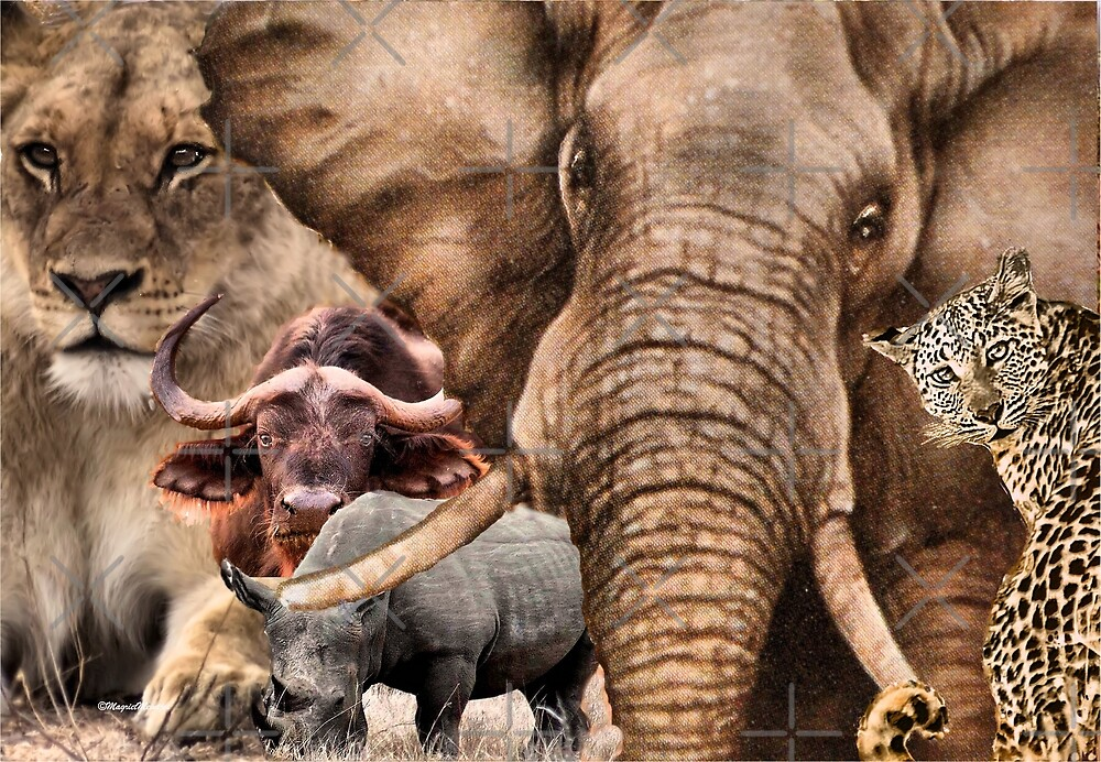 """A COLLAGE OF AFRICA'S """"BIG 5"""" -  by Magriet Meintjes"""