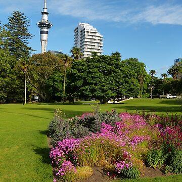 Auckland by PhotosByG