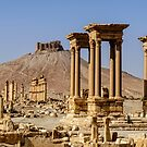 Palmyra.... now the madness of  ignorant despotes returns  by MarcW