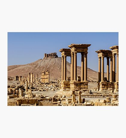 Palmyra.... now the madness of  ignorant despotes returns  Photographic Print