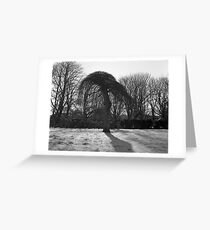 Tree In A Freeze Greeting Card