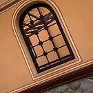 A Layered View Through a Fence Window by Georgia Mizuleva