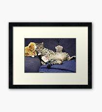 Just me, my beer, and my pussies...  Framed Print