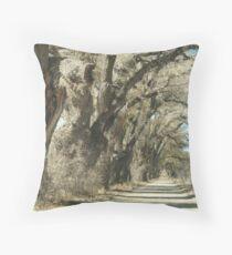 Tree Lined Road-  Arizona Throw Pillow