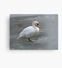 Skating Swan Canvas Print