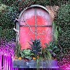 Esmeralda's Window by Sandra Fortier