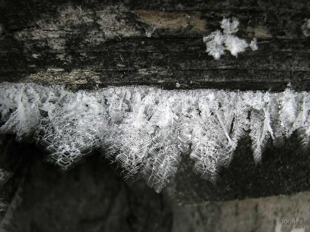 tiny ice crystals under the makeshift bridge by loralea