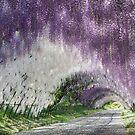 Wisteria Tunnel by Dawn van Doorn