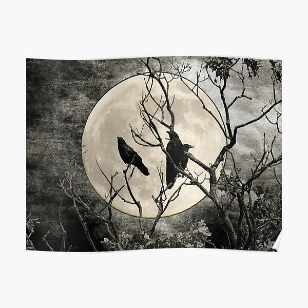 Black White Crows Birds Tree Moon Landscape Home Decor Matted Picture Print A268 Poster