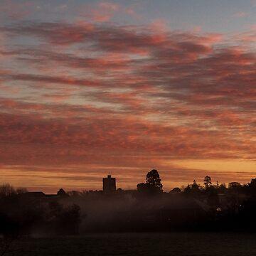 Misty December Morning At Axminster  by widdy170